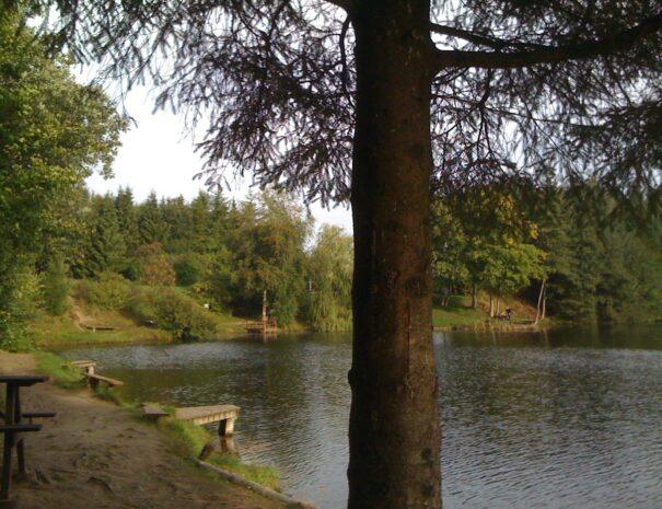 Søen-4781b159